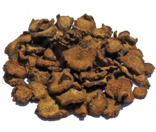 Burdock Root Diet Value Premium Herbs Organic Herbs Healthy Herbs