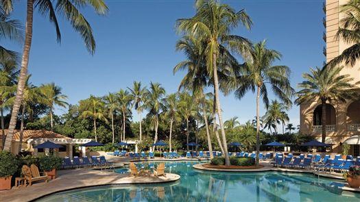 Ritz Carlton Naples Florida Malayan Coconut Real Palm Trees Resort Style Living & Landscape