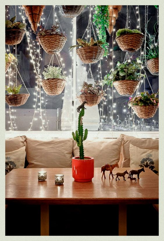 Hanging plants and fairy lights: