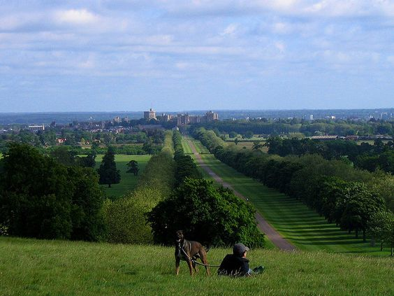 Windsor Castle as seen from the Copper Horse Hill (really only works viewed large)