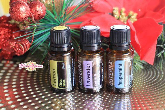 The Trio Beginner Oils doTERRA