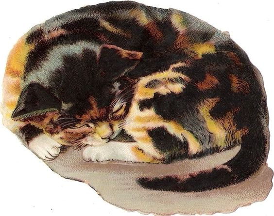 Oblaten Glanzbild scrap die cut chromo Katze  10,5cm cat kitten chat: