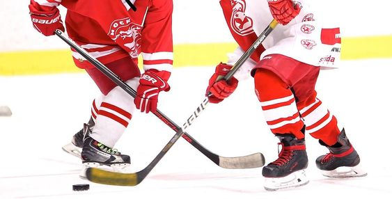 Coaching Youth Hockey From Mites To Peewees By Patrick Burke Coa Youth Hockey Hockey Coaching