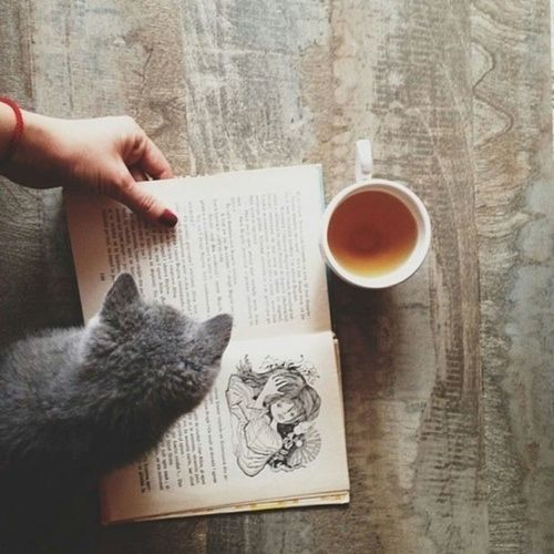 Cat Girl Beautiful Hipster Vintage Indie Coffee Book Hand
