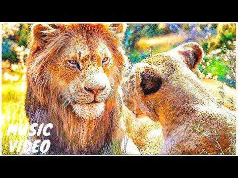 The Lion King Can You Feel The Love Tonight Official Movie Scene Sneak Movie Scenes Lion King Lion