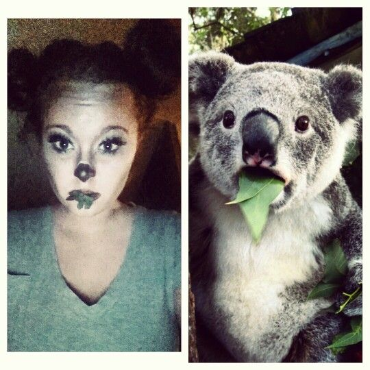 Koala bear makeup / Halloween costume