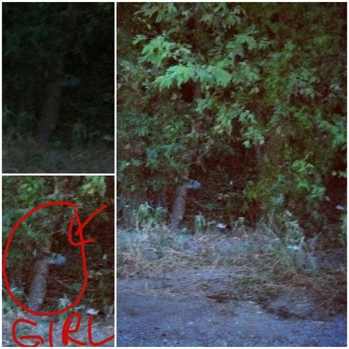 Haunted Abandoned Places In San Antonio: Pictures Of 3 Different Ghosts… Picture Of A Ghost Cat