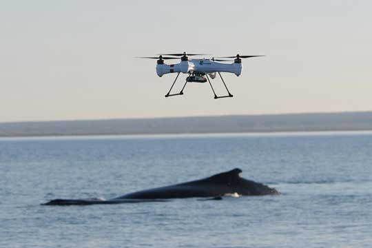 Splash Drone, le premier drone adapté à la navigation