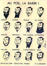 Resultado de imagen de différents types de barbes