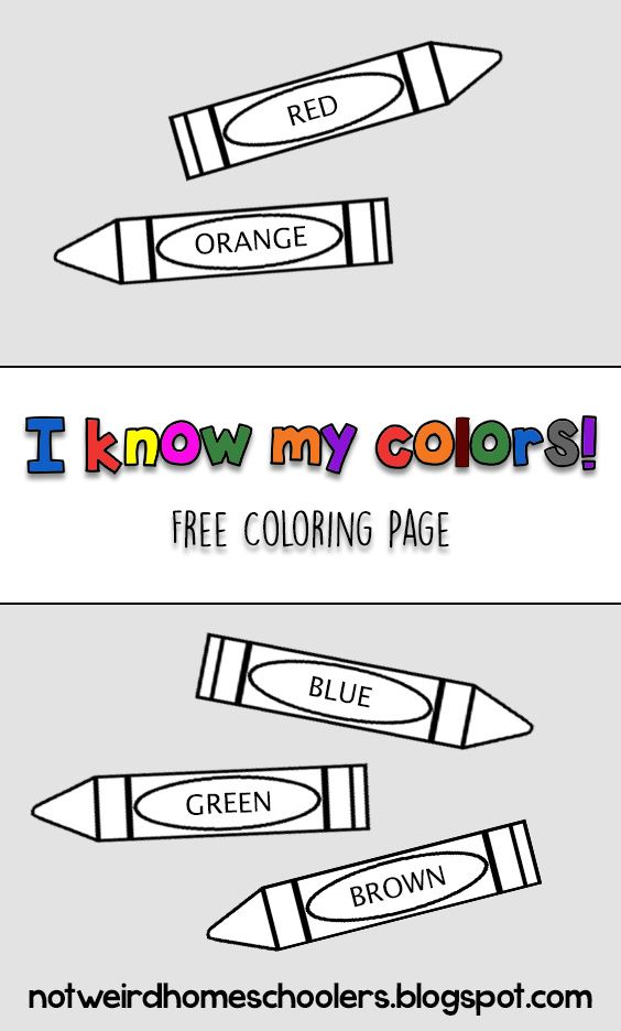 I Know My Colors Help Preschoolers Learn And Identify Colors By