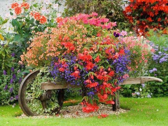 une brouette en bois décorative avec des fleurs vivantes