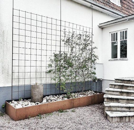 Armeringsn t spinneriet garden pinterest tr dg rdar industriell och v xter - Cacher un mur moche ...