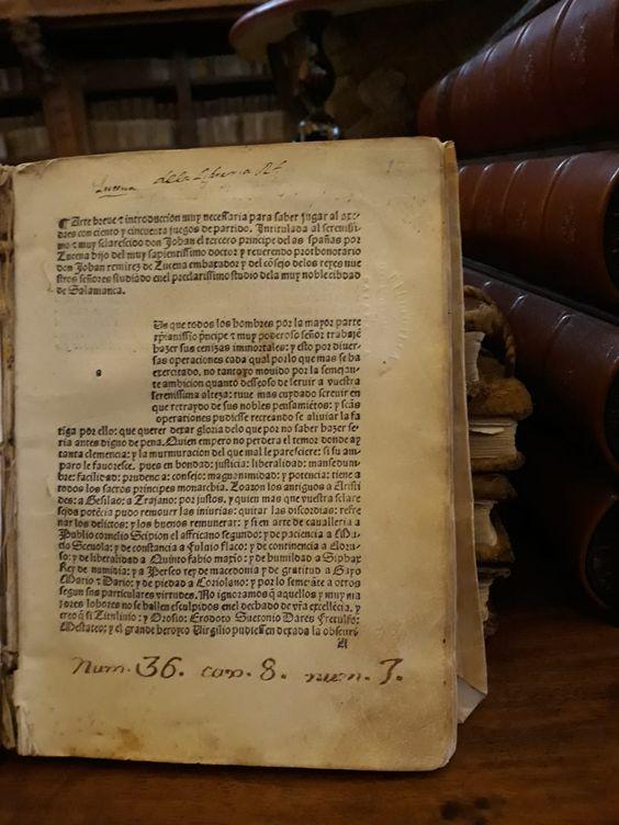 """""""Repetición de amores y arte de ajedrez"""" (Incunable. Salamanca, 1496)"""