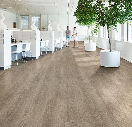 Forbo Allura Commercial 0 55 Mm W60282 Dark Giant Oak Tegels En Interieur