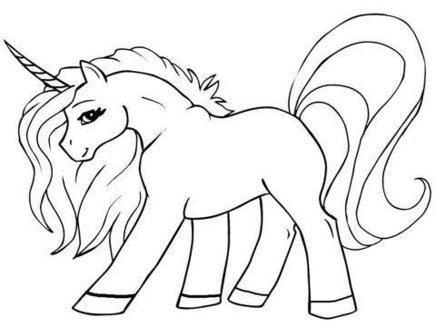 Pin Em Unicorn