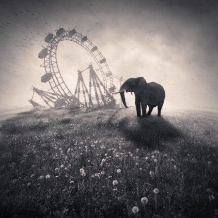 Please subdue the anguish of your soul. Nobody is destined to only happiness or to pain. The wheel of life takes one up and down by turn. Kalidasa  (Photo courtesy of www.verticalsearcher.com)