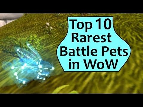 Rarest Pets In Wow Top 10 Rarest Battle Pets In World Of