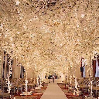 icy trees indoor ceremony