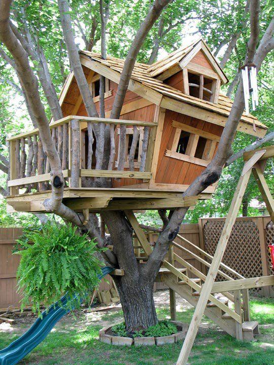 Image Result For Simple Treehouse Multi Limb Tree Tree House Diy