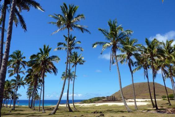 Anakena Beach, is een wit zandstrand, één van de slechts twee aanwezige strandjes op Paaseiland. Op het strand bevinden zich twee Ahu's, de eerste is een op zichzelf staande Moai: Ahu Ature, de andere is een rij van zeven Moai: Ahu Nao-Nao, waarvan er twee zijn vergaan. Ahu Nao-Nao zie je hier in de verte liggen.