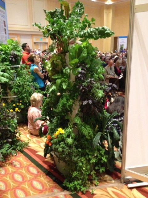 Convention Towergarden. WOW