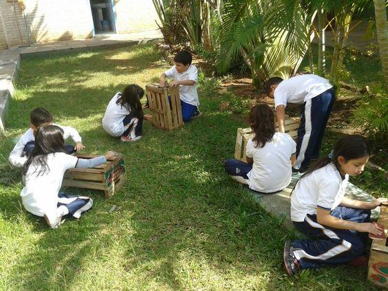 Cultivar en cajones de manzana, como parte del proceso escolar