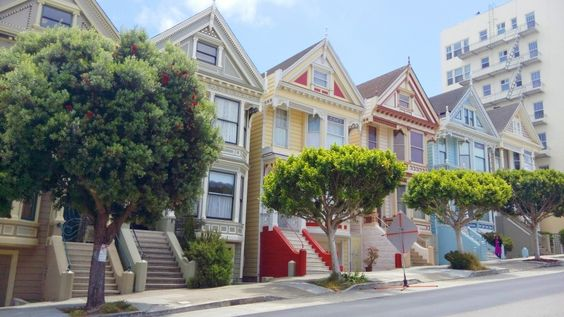 Painted Ladies❤: