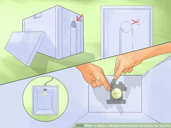 Image titled Make a Simple Homemade Incubator for Chicks Step 1