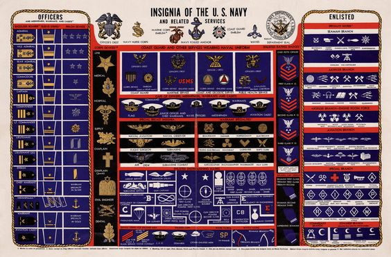 navy rank insignia enlisted and officer   Ranks and Rates