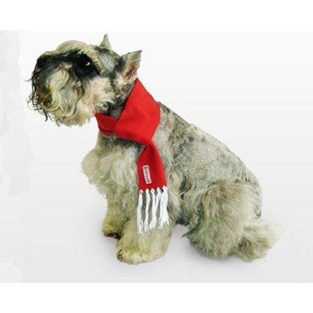 Cachecol para Cachorro Vermelho Bichinho Chic - MeuAmigoPet.com.br #petshop #cachorro #cão #meuamigopet