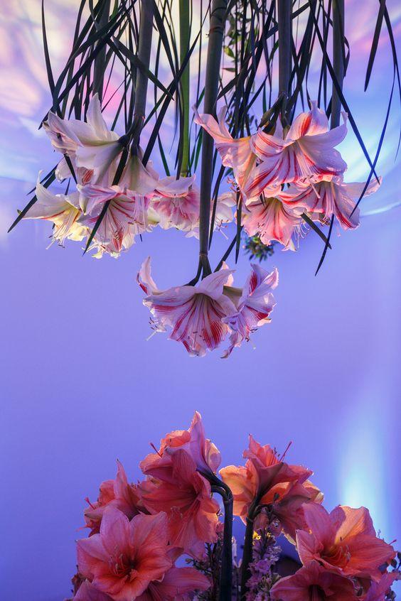 KC event flowers