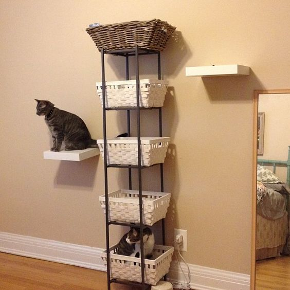 Shelves metals and cats on pinterest for Bookshelf cat tower