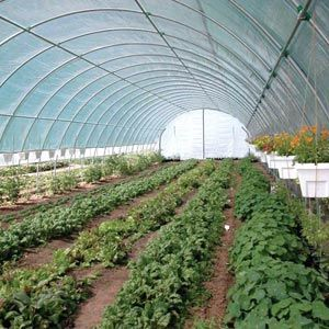 High Tunnels Amp Cold Frames Premium Round Style High