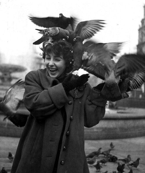Elizabeth Taylor feeding the pigeons in Trafalgar Square, London.