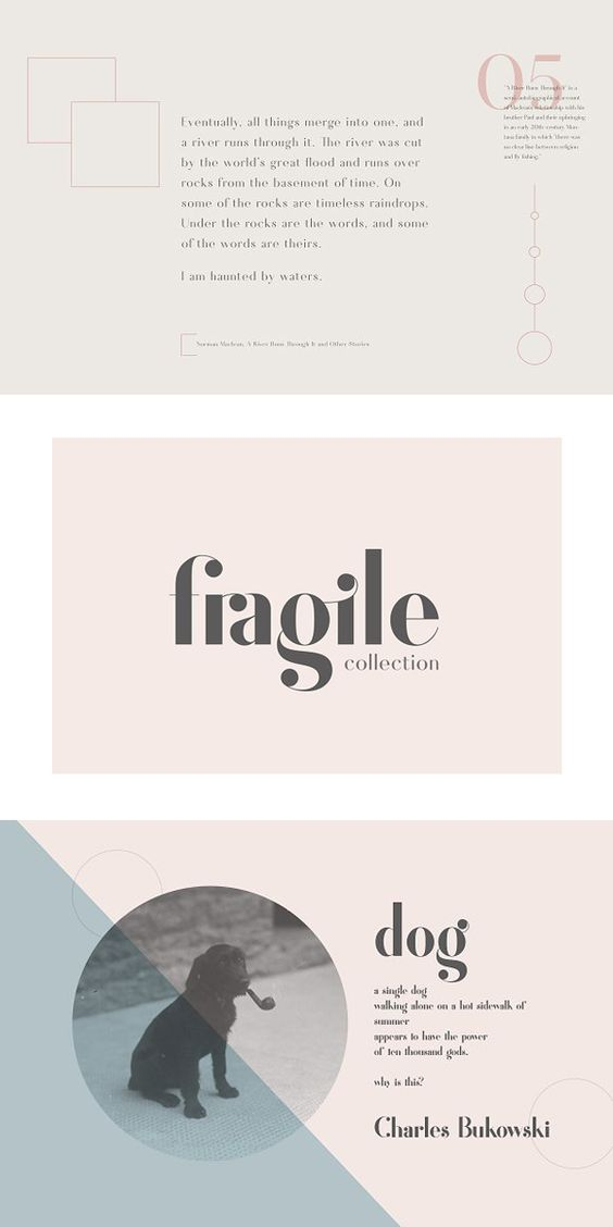Create gorgeous, elegant graphics with the Fragile Collection, a collection of three unique, best-selling fonts, each with their own personality, based on classic letterforms and designed for use in headlines, invitations, logos, layouts, and more. With three distinct products, you can always find the perfect pairing or individual font for your next project. #StencilFonts #ChristmasFonts #TextFonts #WebsiteFonts #PrettyFonts #ModernFonts #LogoFonts #RetroFonts