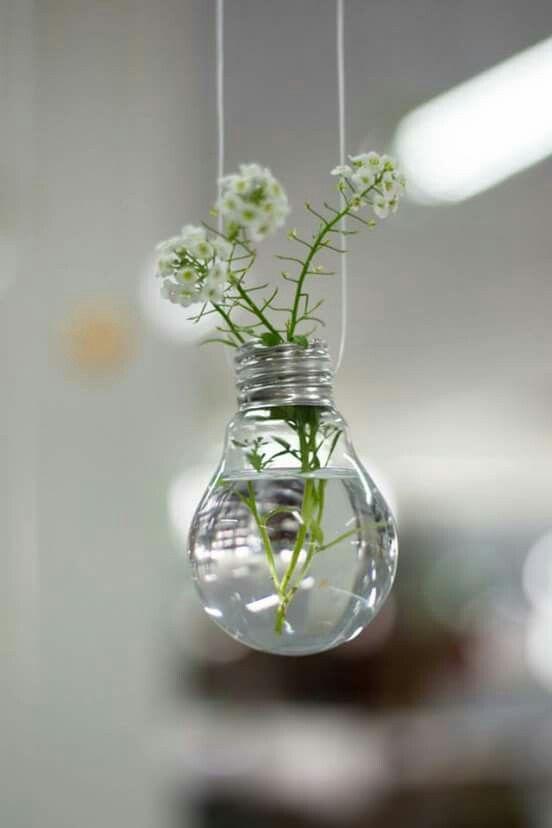 """Vasos feitos com lâmpadas incandescentes usadas. Este fez parte da exposição """" Plante Ideias""""."""