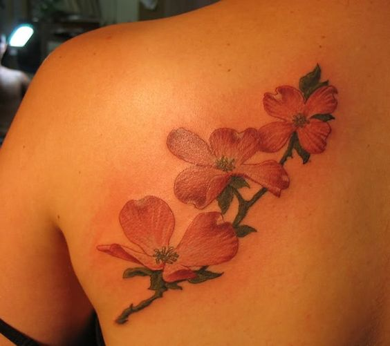 dogwood tattoo....instead ofthe cherry blossoms that are in my thigh tattoo design.