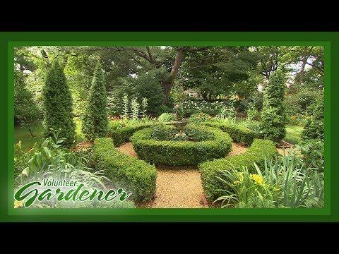 Diy Garden Design Creating Garden Rooms Volunteer Gardener In 2020 Garden Design Diy Garden Diy Backyard