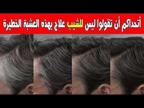 عشبة خطيرة لعلاج الشيب بأنواعه مهما كانت كثافته ولونه ومهما كان سنك اتحداكم أن تقولو ليس للشيب علاج Youtube Hair Care Recipes Hair Treatment Shampoo