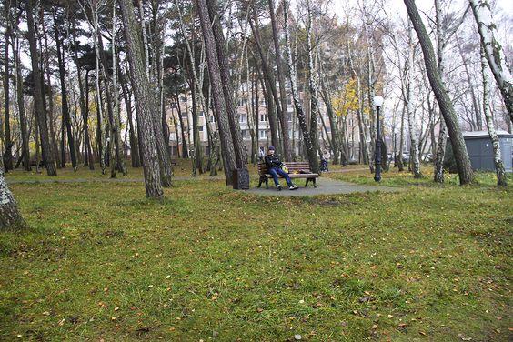 В парке Сосновый бор в Пионерском. Фото: Evgenia Shveda