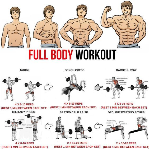 Pin By Fernando Aragao On Fitness Workout Plan Gym Full Body Workout Routine Full Body Workout Plan
