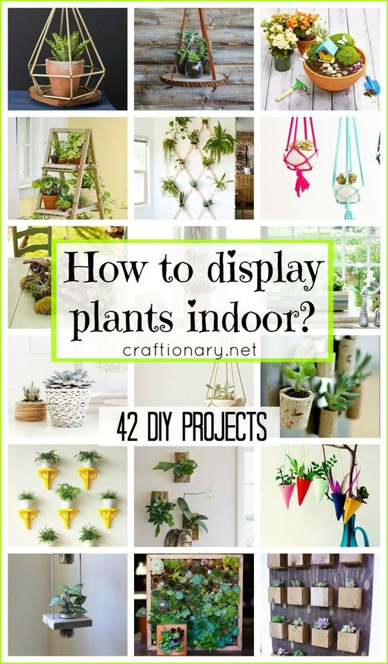 How To Display Plants Indoor 42 DIY Projects Plants
