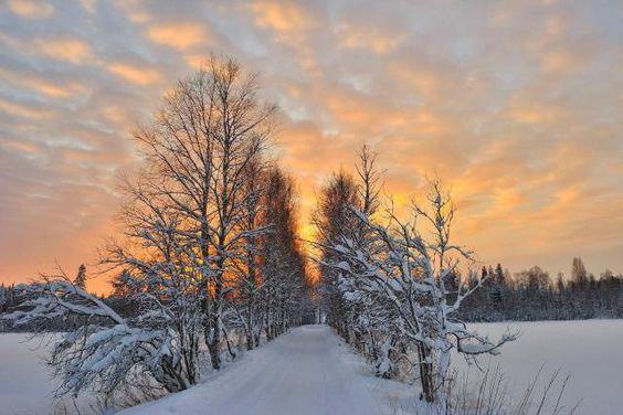 Capodanno svedese
