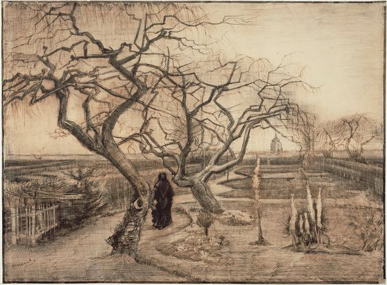 The Art Room: Bare Trees: Vincent van Gogh: Ink Drawing, Gogh Drawings, Gogh Sketches Drawings, Art Van Gogh, Van Gogh Museum, Winter Garden, Gogh 1853 1890, Vincent Van Gogh