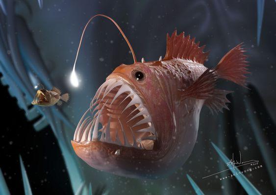 2 Bigeatsmall1k Jpg 1 024 724 Pixels Deep Sea Creatures Angler Fish Sea Creatures