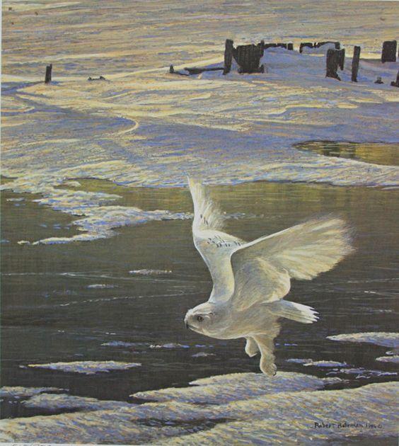 Artist/Naturalist ROBERT BATEMAN (Canadian: 1930) | Painting... Winged Spirit Snowy Owl: