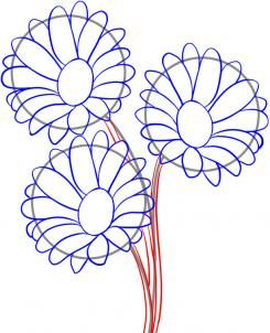 how to draw daisies step 4
