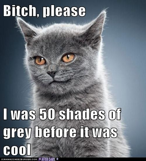 LOL fifty shades of grey humor LOVE IT!