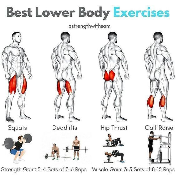 Gym Exercises To Build Muscle Fast Infoupdate Org In 2020 Lower Body Workout Weight Training Workouts Muscle Building Workouts