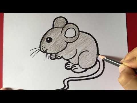 How To Draw Mouse Easy Step By Step Chuhe Ka Chitra Banane Ka Aasan Tari Mouse Drawing Drawings Draw